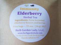 Elderberry for the immune system