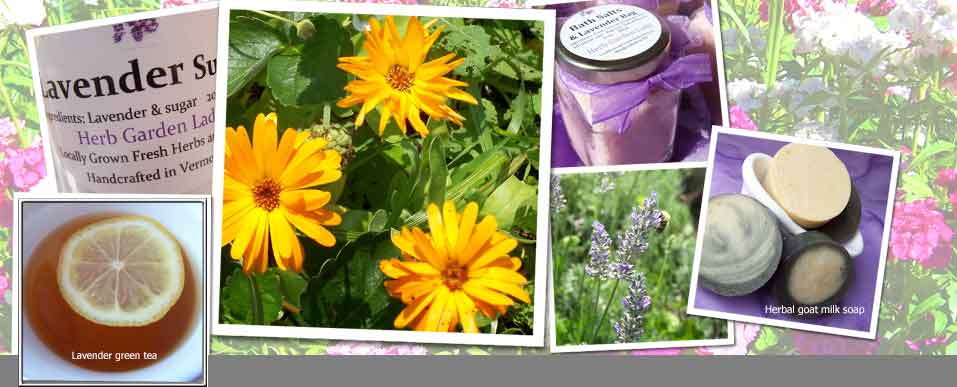 Calendula herb, handmade soaps, lavender, herb plants, herbal teas, herb uses